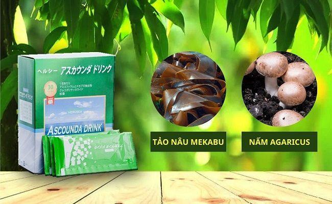 Lựa chọn Fucoidan có chứa tảo nâu Mekabu và Nấm Agaricus