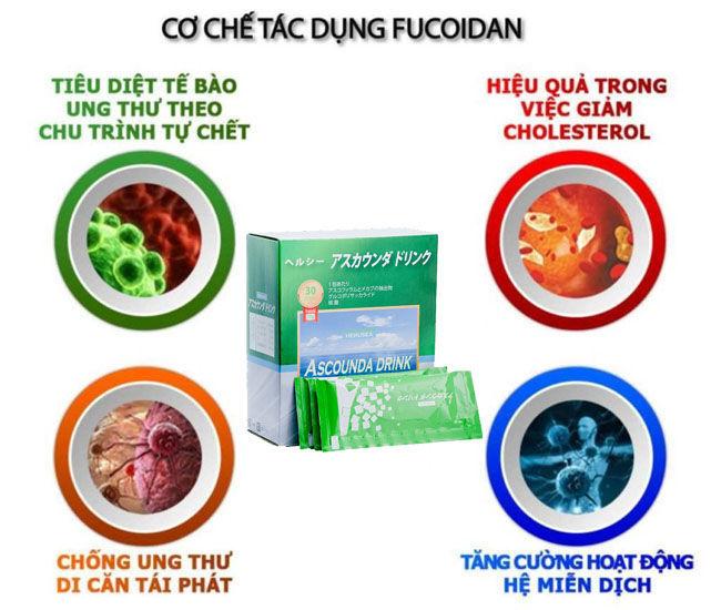 Cơ chế tác dụng của Fucoidan